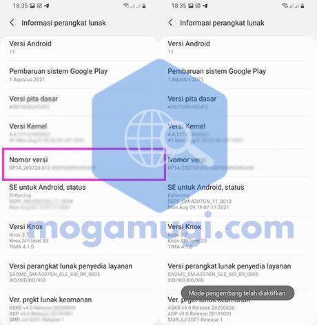 Aktifkan Developer Options Samsung A30